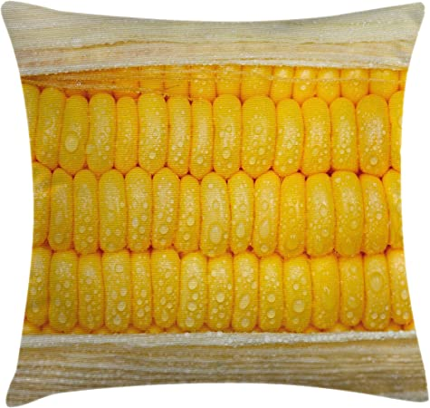 Throw Pillow Cushion Cover