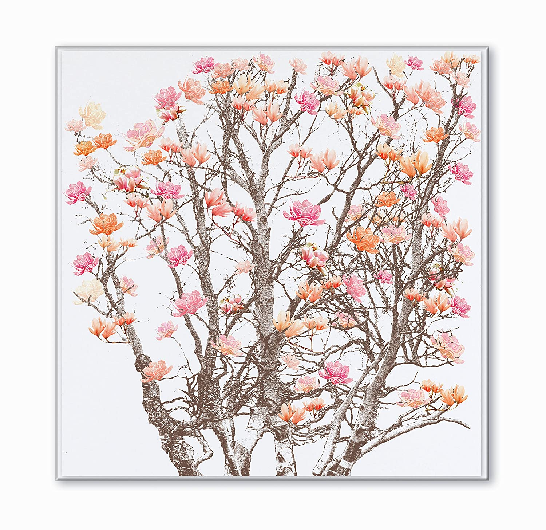 Impresión Decorativa Sobre Plex lunosa, primavera Magnolias