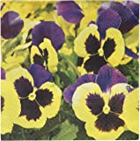 Abbott Collection Pansies Meadow Paper Napkins, Large (20 pack)