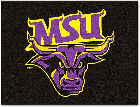 FANMATS NCAA Minnesota State Univ Mankato Mavericks Nylon Face Carpet Car Mat
