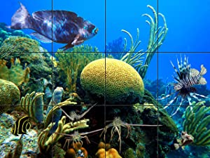 Brian Coral Reef Tile Mural 18 x 24 Inches | Underwater Photos Printed on Glossy Ceramic Tiles | Original Photography by Florida Keys Artist Nadine and Glenn Lahti