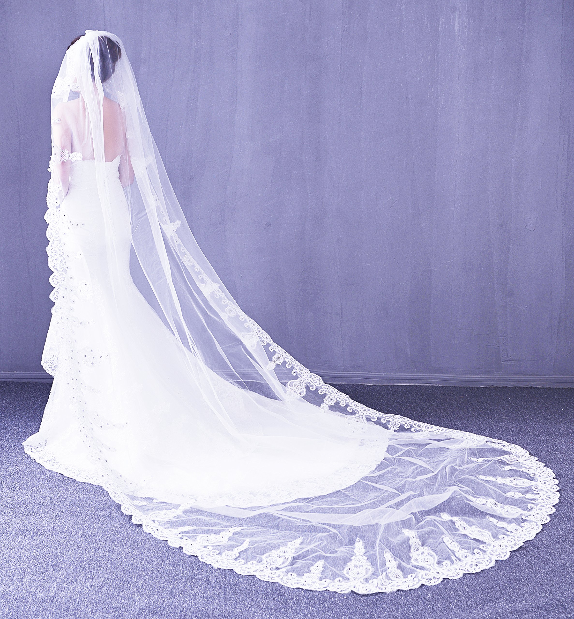 Leekida White Long Cathedral Crystal Wedding Veils with Free Comb
