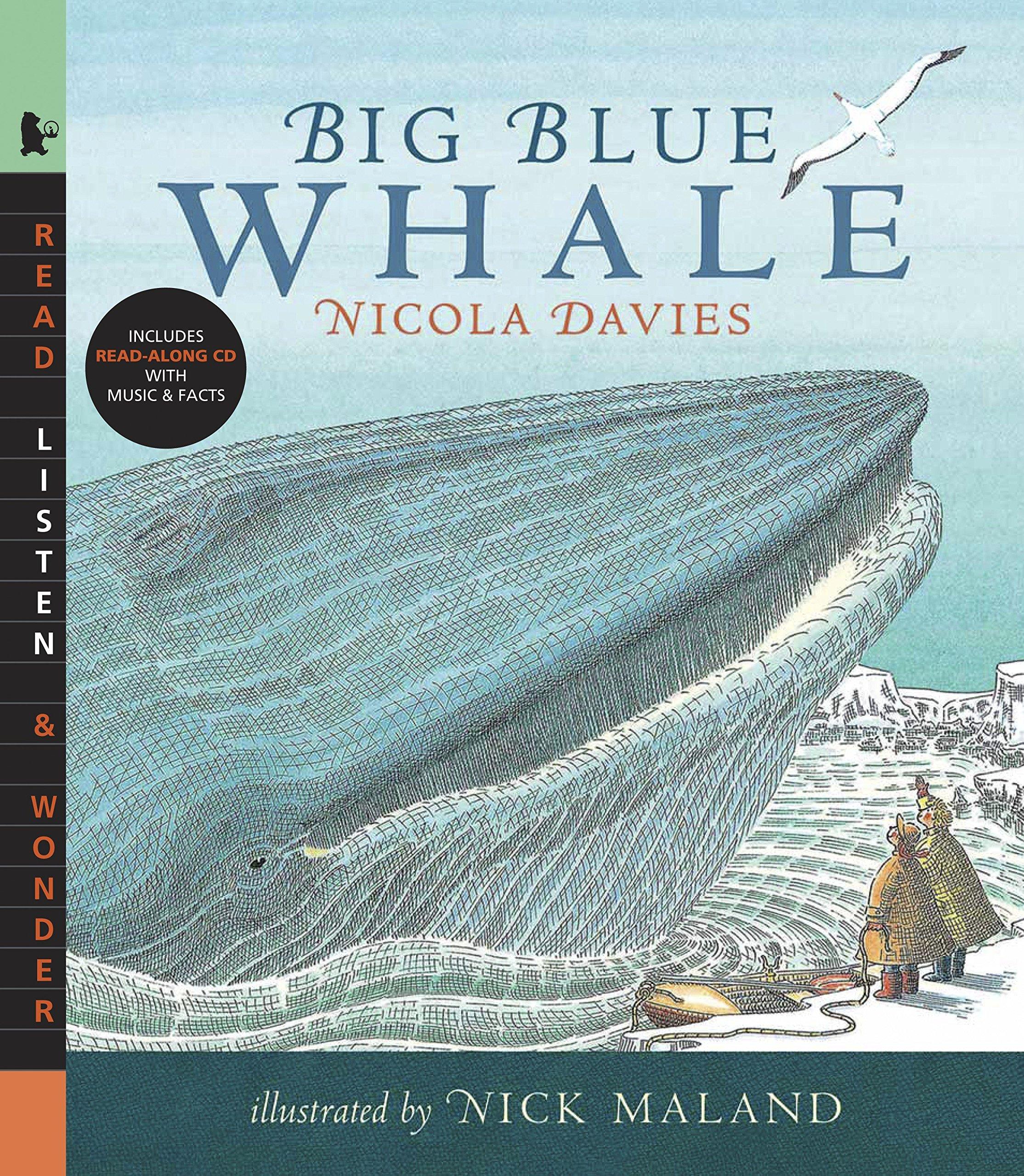 Big Blue Whale (Read, Listen, & Wonder): Amazon.co.uk: Davies, Nicola,  Maland, Nick: 9780763638221: Books