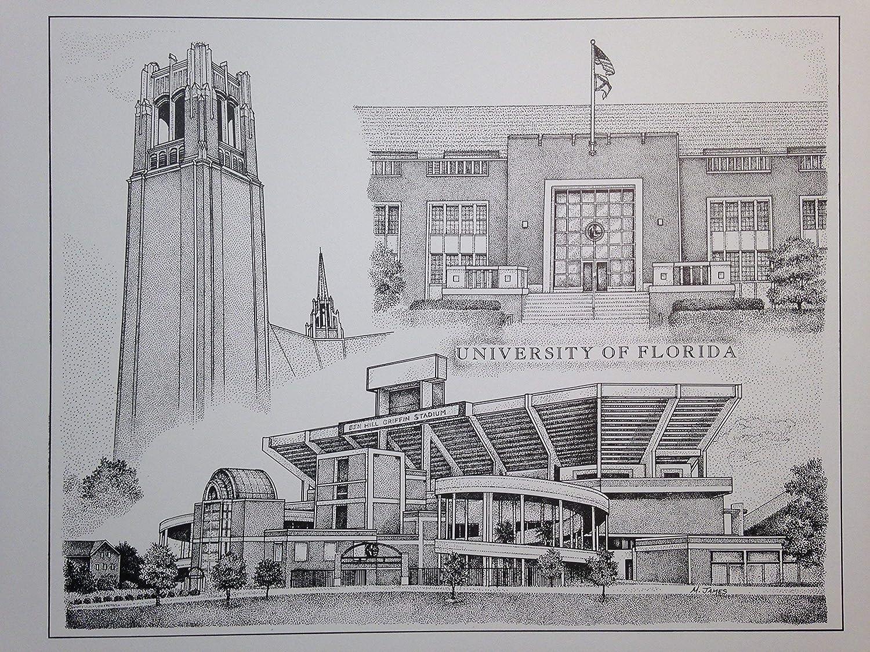 University of Florida 11x14 Print