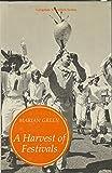 Harvest of Festivals, A (Longman travellers series)
