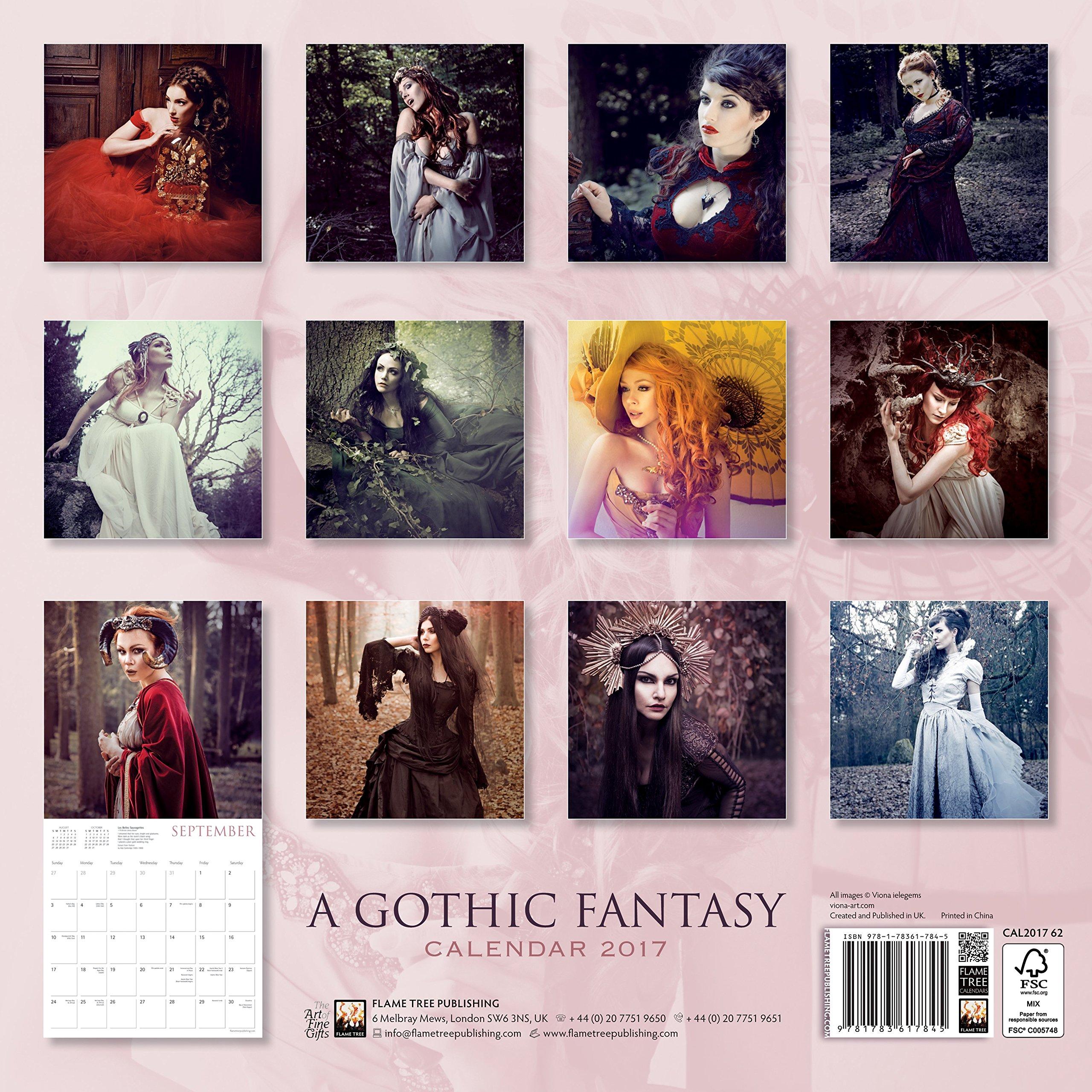 A Gothic Fantasy Wall Calendar 2017 Art Calendar