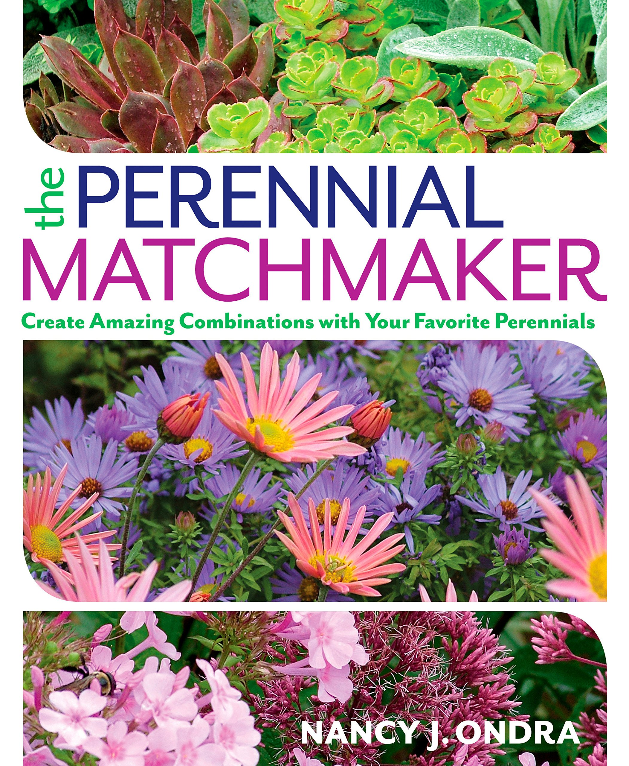 The Perennial Matchmaker Create Amazing Combinations With Your