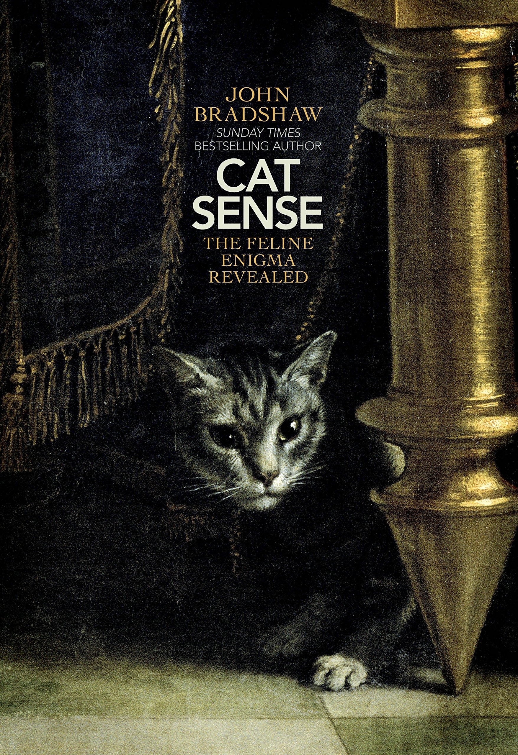 Cat Sense: The Feline Enigma Revealed: Amazon.es: John Bradshaw: Libros en idiomas extranjeros