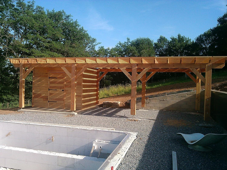 Pergola Plate - Kit de pérgola 690-400 de 27 m2, calidad superior, montaje fácil, fabricante especialista en estructuras de madera 100 % de origen francés, marrón: Amazon.es: Jardín