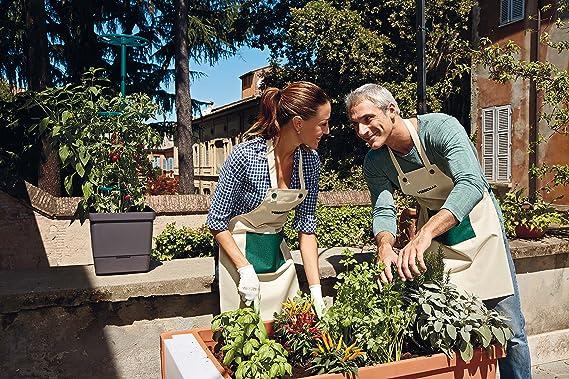 Verdemax-Huerto Urbano 115 x 58 x 28 cm Para Terraza Jardín Y ...