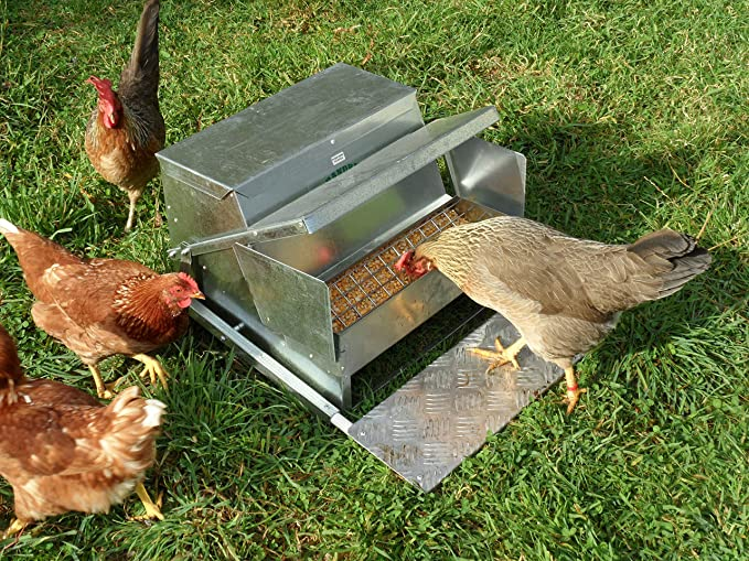 how make allotment rodent technorati a tags heaven to proof rat chicken feeder