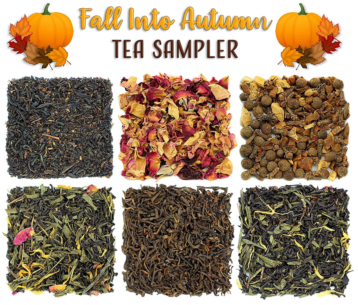 Fall into Autumn Loose Leaf Tea Sampler, Variety Gift Set of 6 Harvest Loose Leaf Teas Solstice Tea Traders