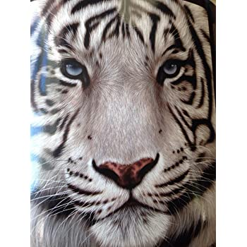 Amazon.com: 9 White Tigers Throw Blanket - Decorative