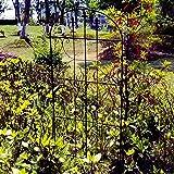 OUTOUR Garden Trellis Plant Support Wire Lattice