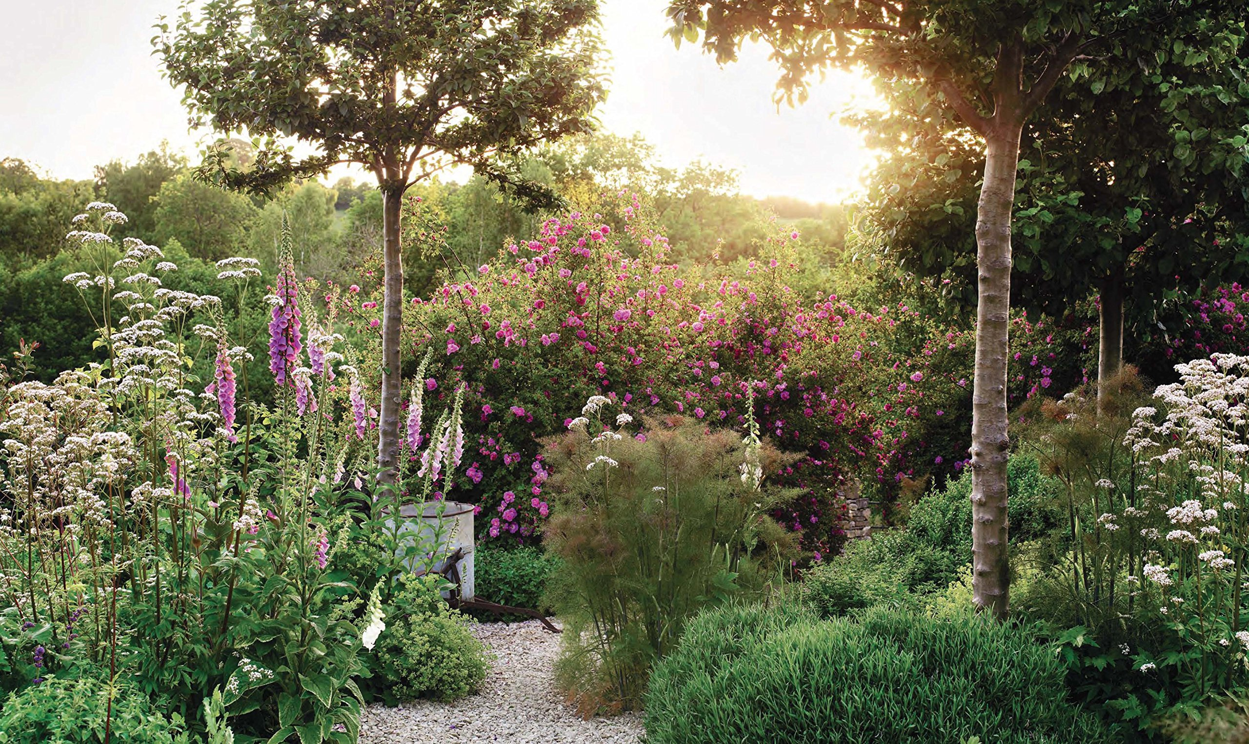 The Thoughtful Gardener: An Intelligent Approach to Garden Design ...
