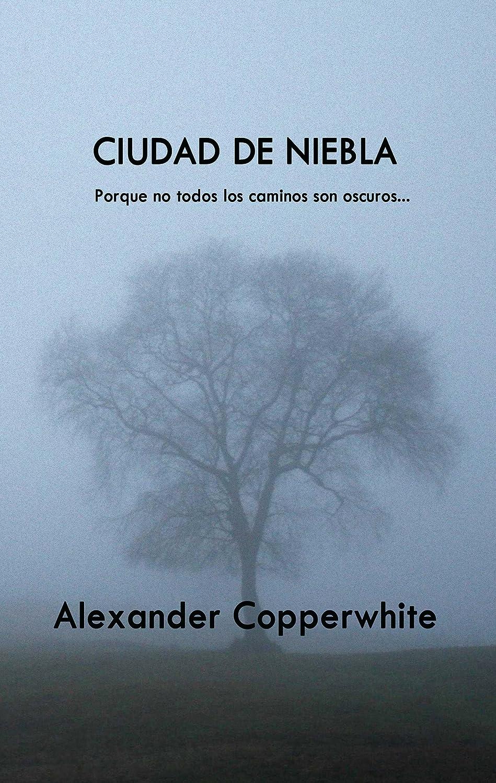 Ciudad de niebla: Un encuentro inesperado (Relato nº 4) eBook ...