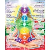Amazon Price History for:16 x 20 Chakra Chart Poster - Chakra Girl - The Path of Transformation, Chakra Yoga, Spiritual Artwork, Reiki, Energy Healing Meditation Art