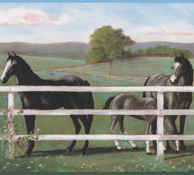 Black Horse Behind White Fence Farm Wallpaper Border Retro Design Roll 15 X 9 Amazon Com