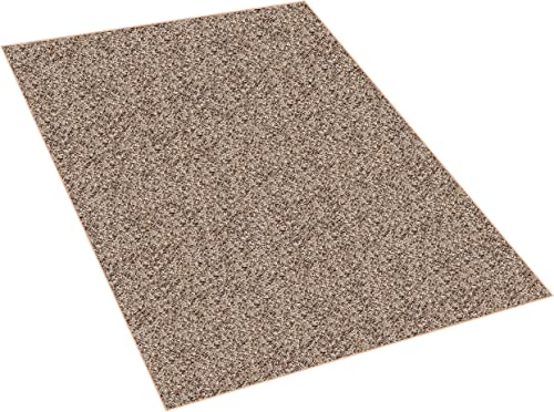 Koeckritz 8 x10 Indoor Frieze Shag Area Rug – Bramble II- Plush Textured Carpet with Premium Bound Polyester Edges.
