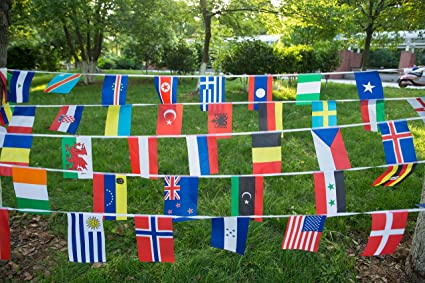 International String Flags Banners,100 Countries Flags World Flags Pennant  Banner for Olympics,Festival,Grand Opening,Bar,Sports Clubs 82 Feet 8 2'' x