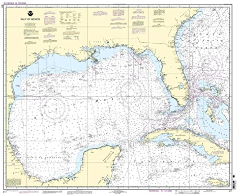 Amazon com noaa chart 411 gulf of mexico fishing charts and