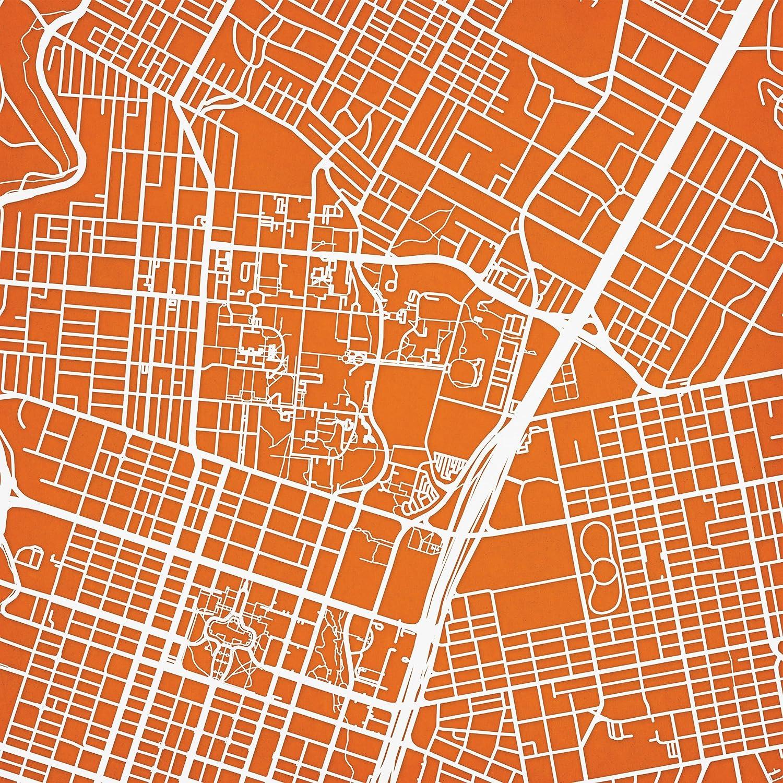 Amazon Com University Of Texas At Austin Campus Map Art 30