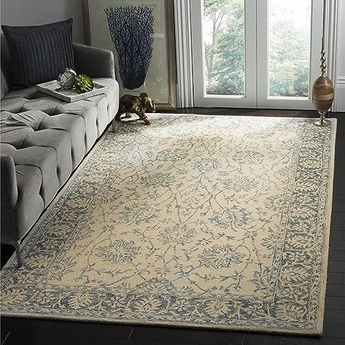 Safavieh Evoke Collection EVK508F Oriental Non-Shedding Stain Resistant Living Room Bedroom Area Rug