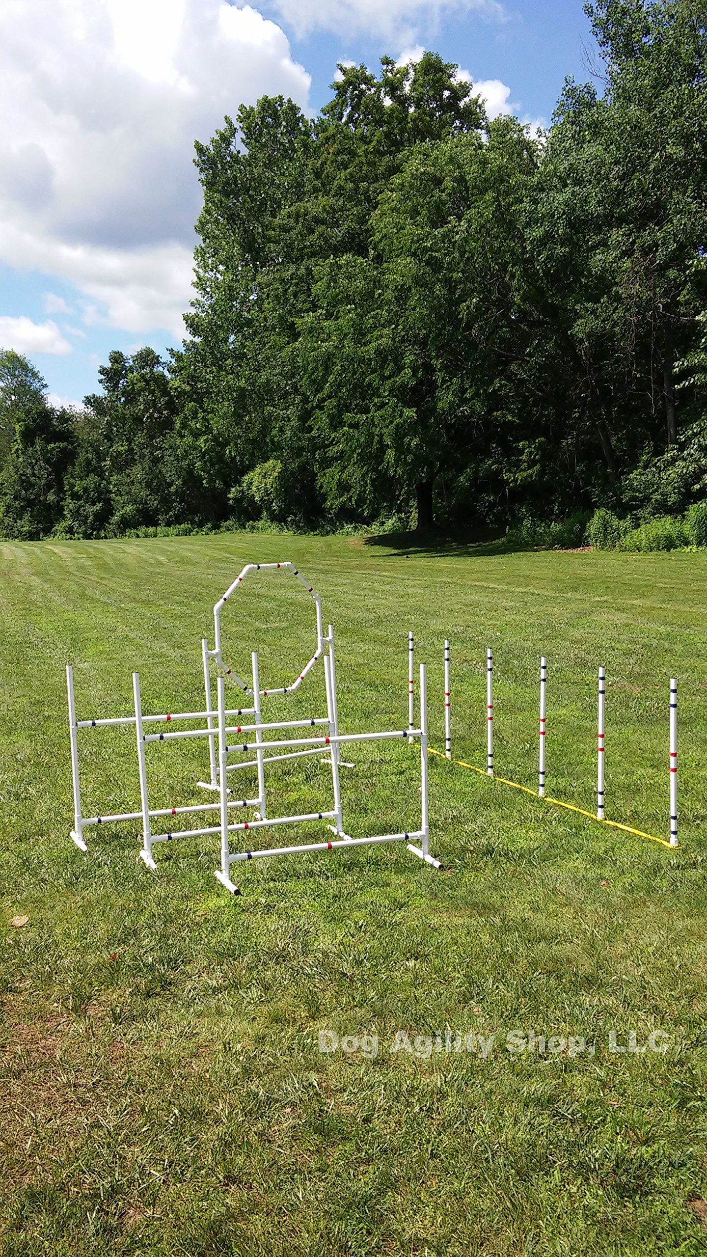 Dog Agility Equipment Deluxe Beginner Set | 3 Bar Jumps | 6 Weave Poles | 1 Octagon Hoop Jump