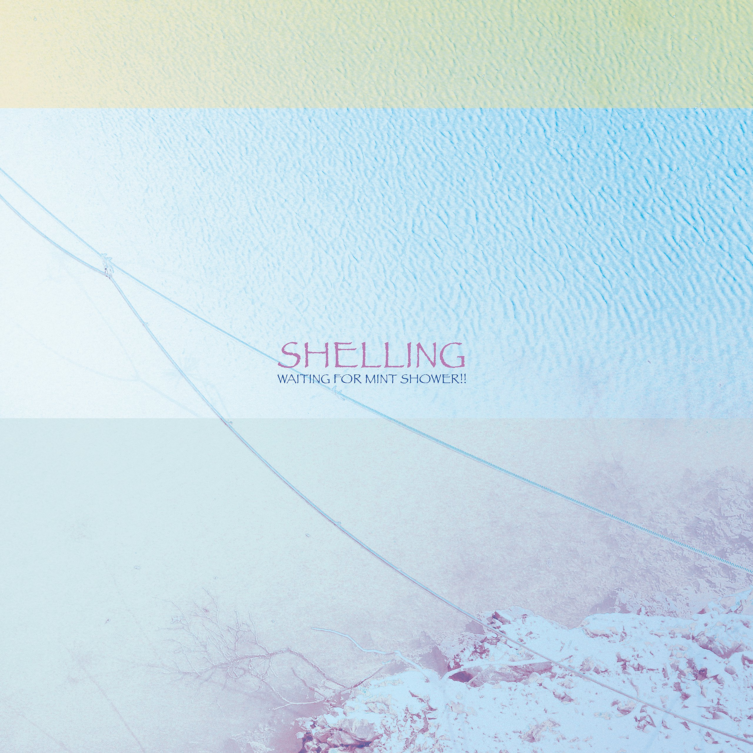 Shelling - Waiting For Mint Shower!! (2017) [WEB FLAC] Download
