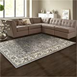 Superior Elegant Lille Collection Area Rug, 8mm Pile Height with Jute Backing, Beautiful Chic Bordered Rug Design, Anti-Static, Water-Repellent Rugs - Cream, 5' x 8' Rug