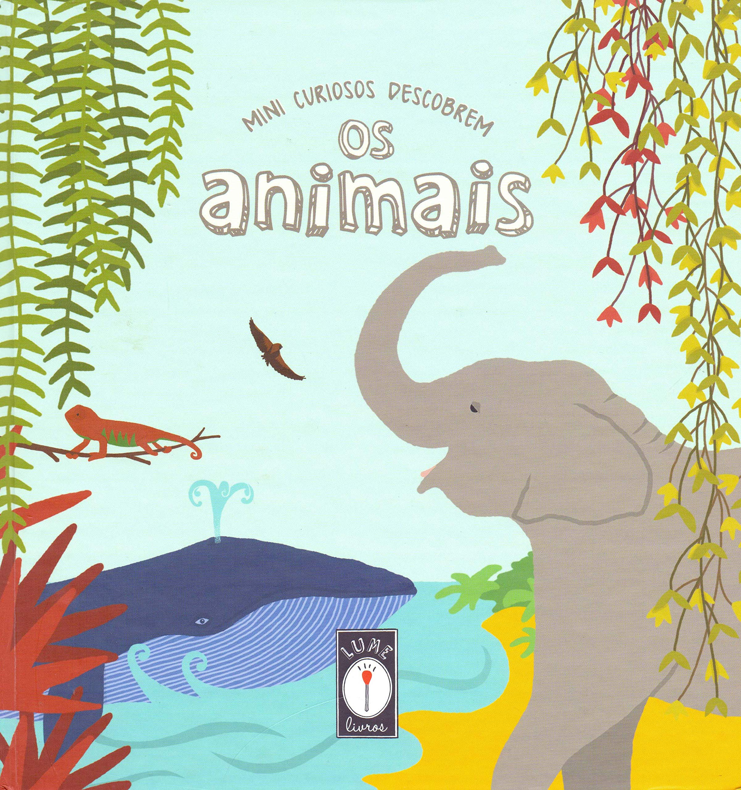 Mini Curiosos Descobrem os Animais: Vários Autores: 9788591967216 ...
