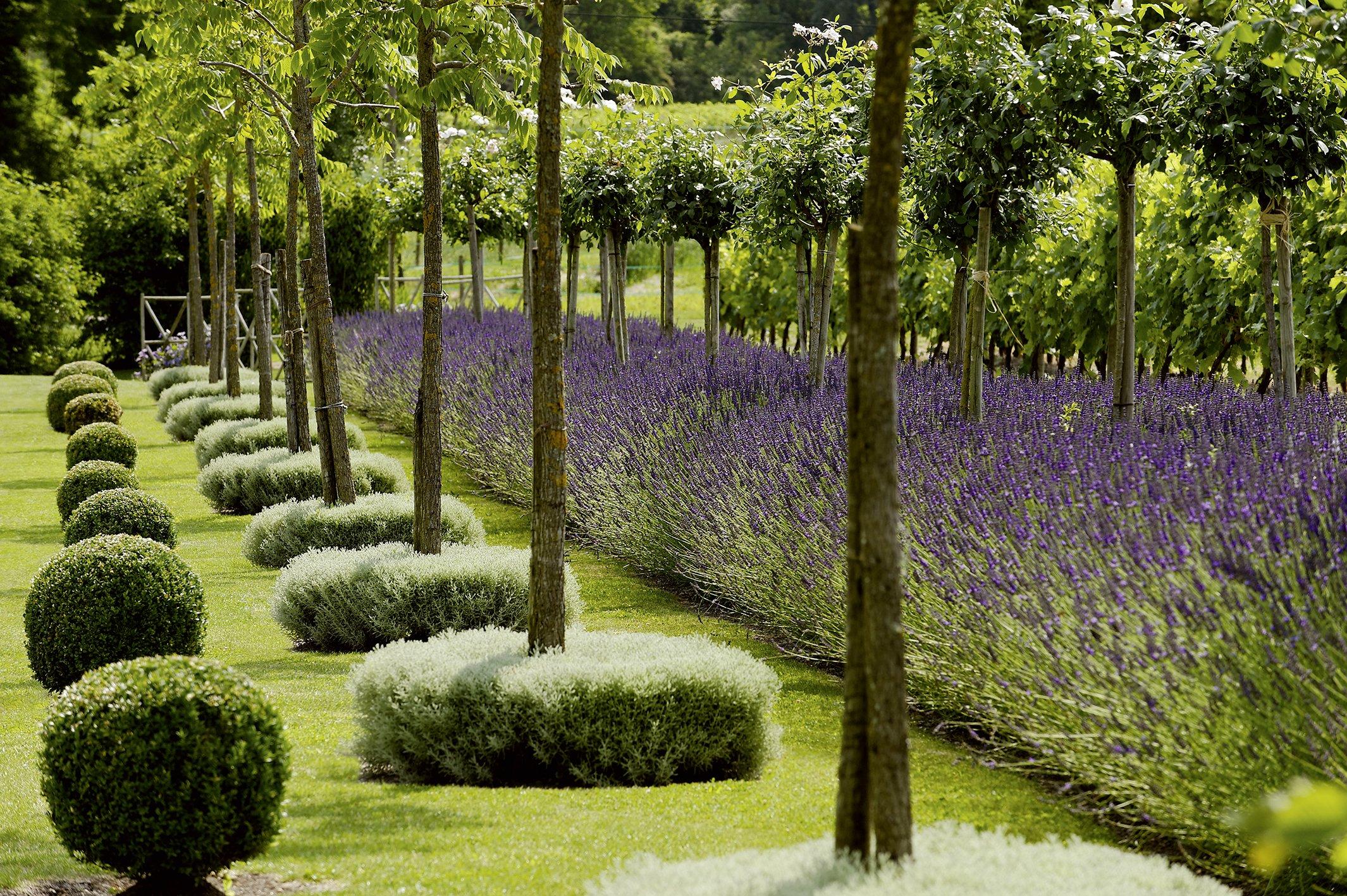 Luxus Gartenideen Für Wenig Geld Design