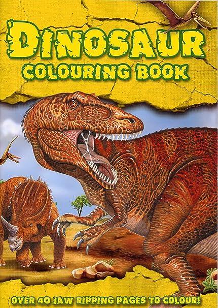 Jeux Coloriage Dinosaure.Coloriage Dinosaure 51 Differents Dinosaures A Colorier Amazon Fr