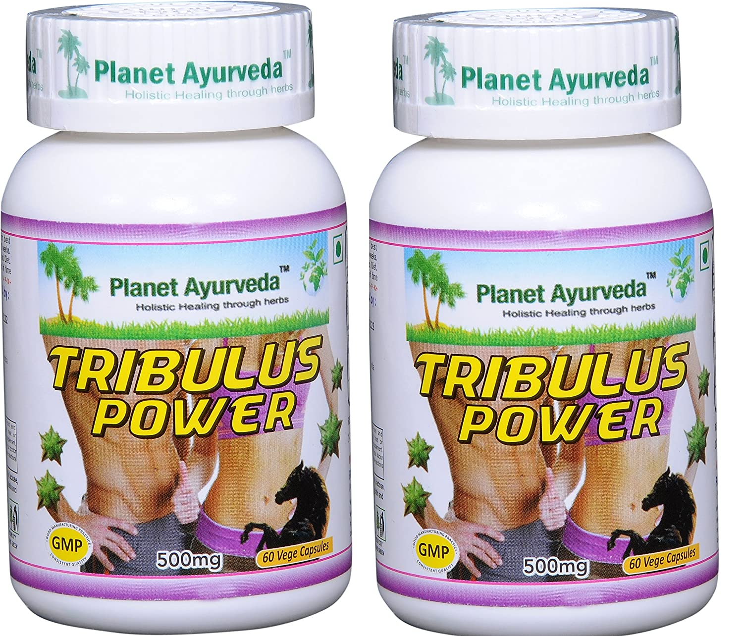 Planet Ayurveda Tribulus Power, 500mg Veg Capsules – 2 Bottles – Bring Out the Man in You