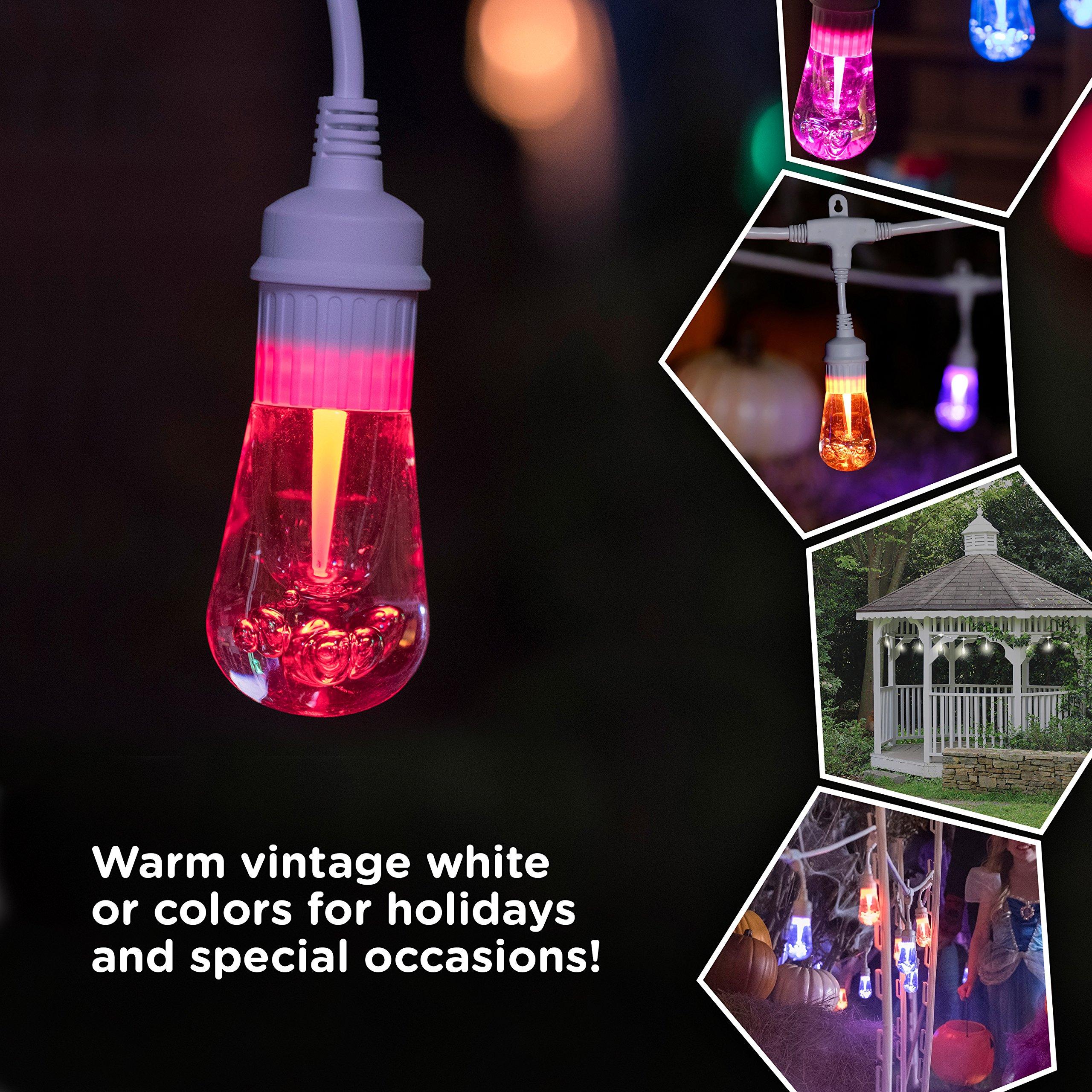 Enbrighten Outdoor String Lights: Enbrighten Vintage Seasons LED Warm White Color Changing
