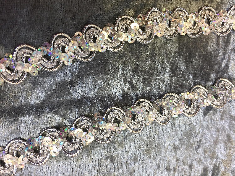Decorativo treccia/rifilatura 1701con paillettes argento Nova