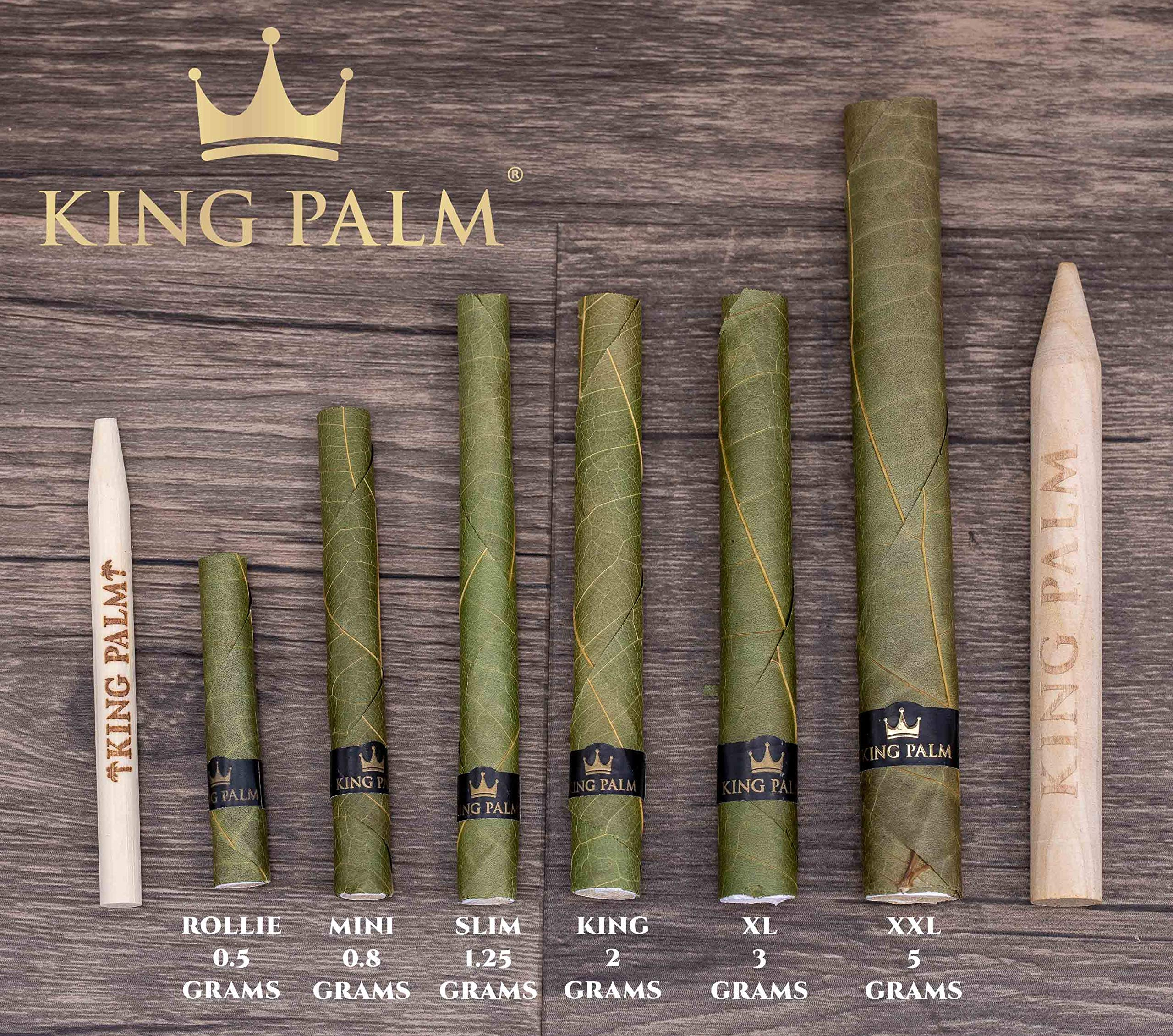 King Palm Mini Size Natural Pre Wrap Palm Leafs (25 Pack) by KING PALM