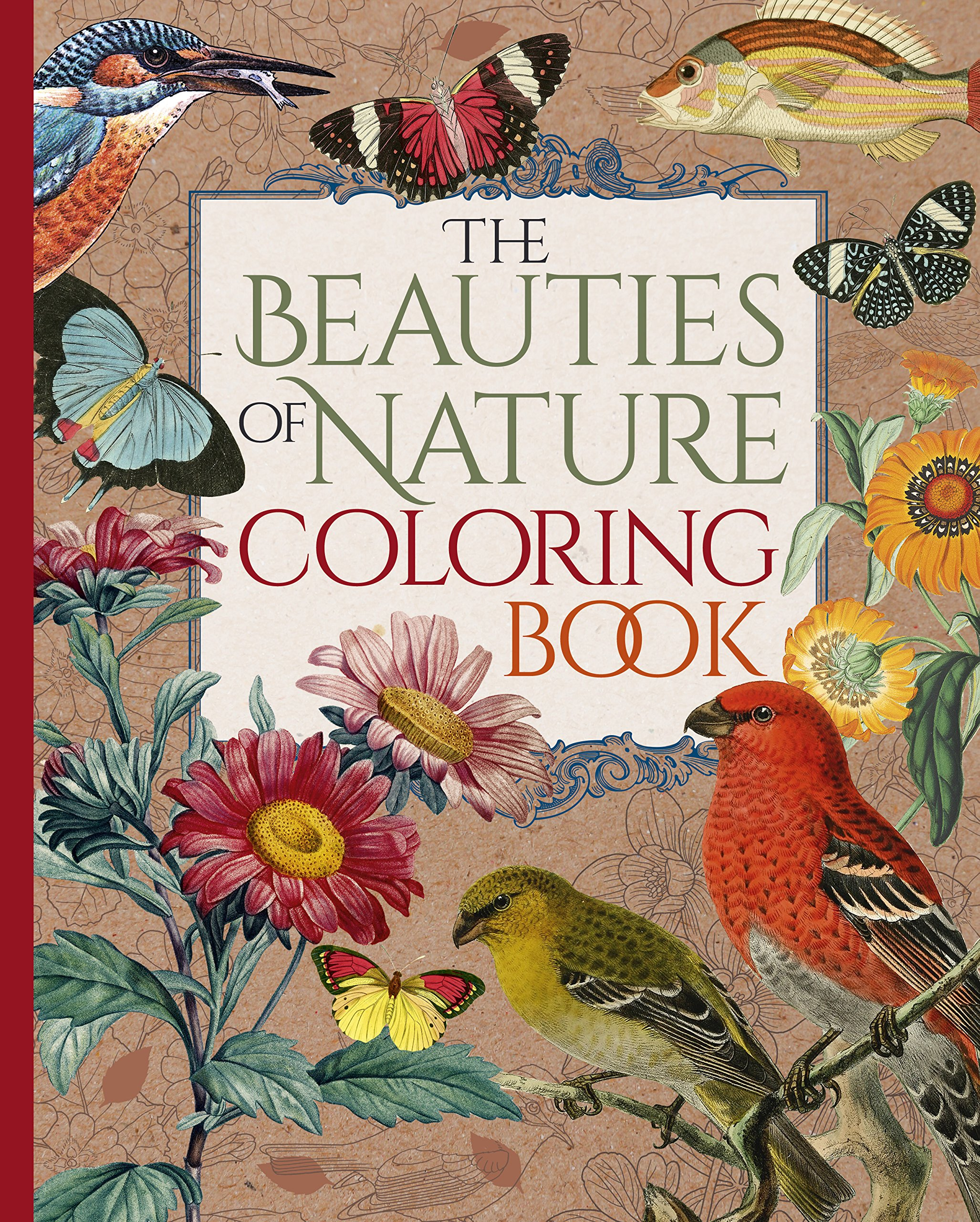 amazoncom the beauties of nature coloring book coloring flowers birds butterflies wildlife 9781785994661 pierre joseph redout - Nature Coloring Book