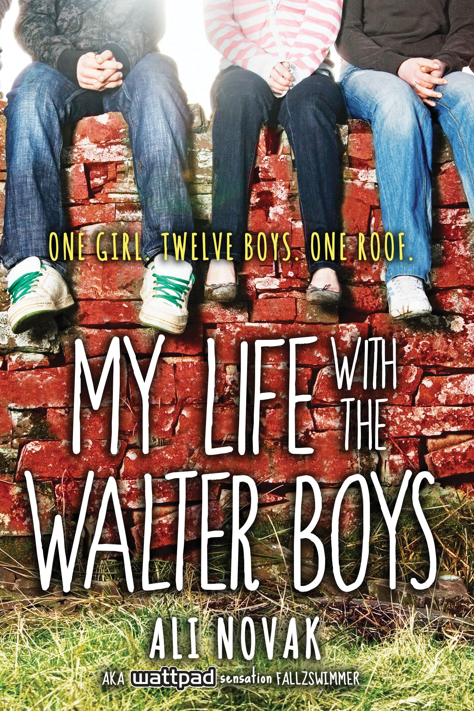 Image result for my life with the walter boys