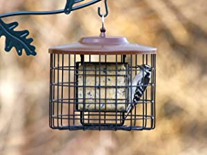 Stokes Select Caged Bird Feeder
