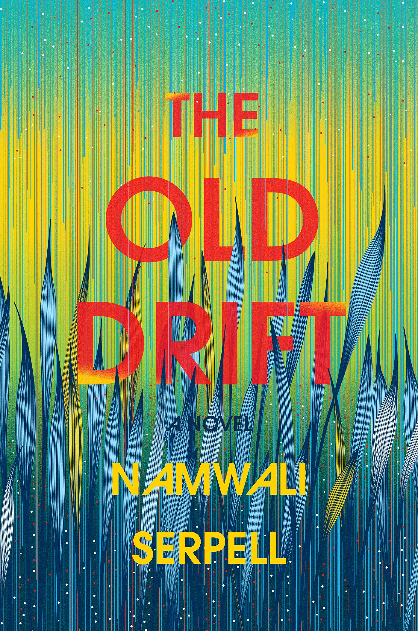 Image result for the old drift namwali serpell book cover
