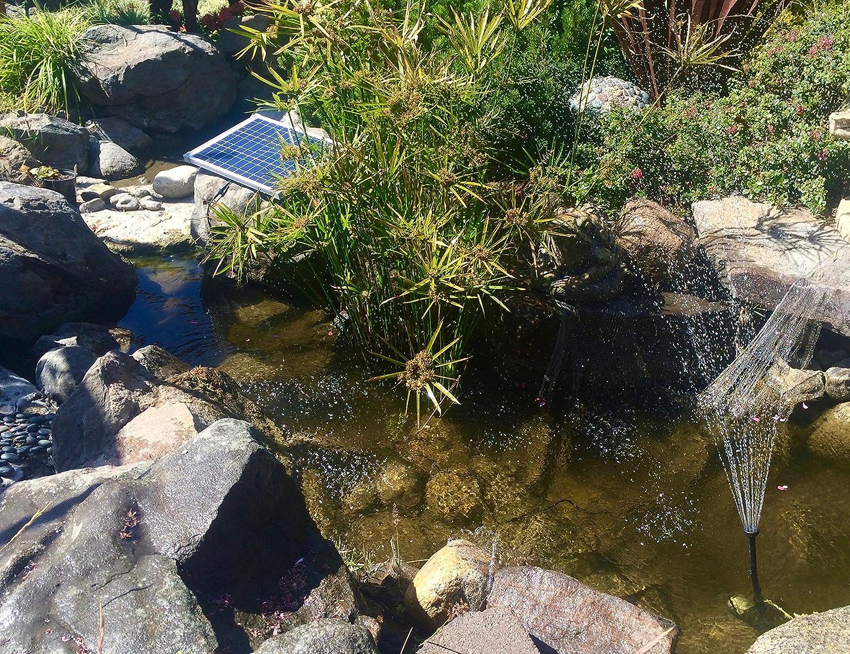 Amazoncom  Solar Water Pump Kit GPH With V Brushless - Amazon pond pumps