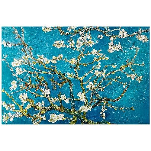 Bilder van Gogh: Amazon.de