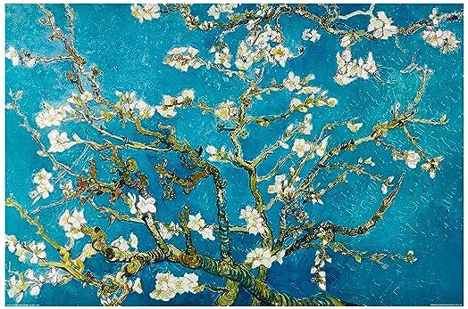 1art1 48105 Poster Vincent Van Gogh Painting \