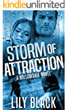Storm of Attraction (Willowdale Book 1) (English Edition)