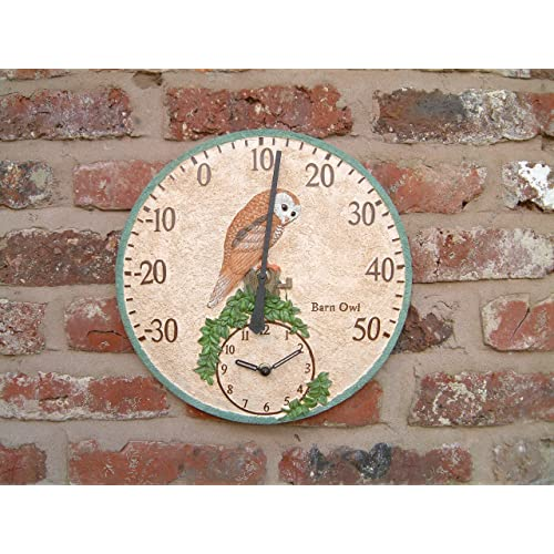 Outdoor Wall Thermometer With Clock Hand Painted 30cm Barn Owl Bird design