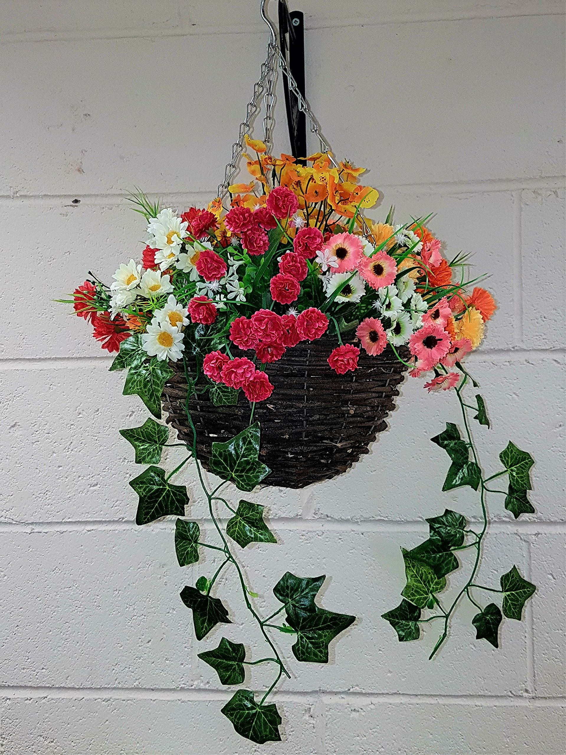 Flowers For Hanging Baskets Amazon