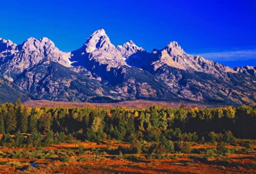 Amazon Com Grand Tetons In Autumn Grand Teton Np Wyoming Landscape Photo Nature Photography Wall Art Home Decor Office Decor Sizes Up To 44x66 Inches Fine Art Print Signed By The Artist Handmade
