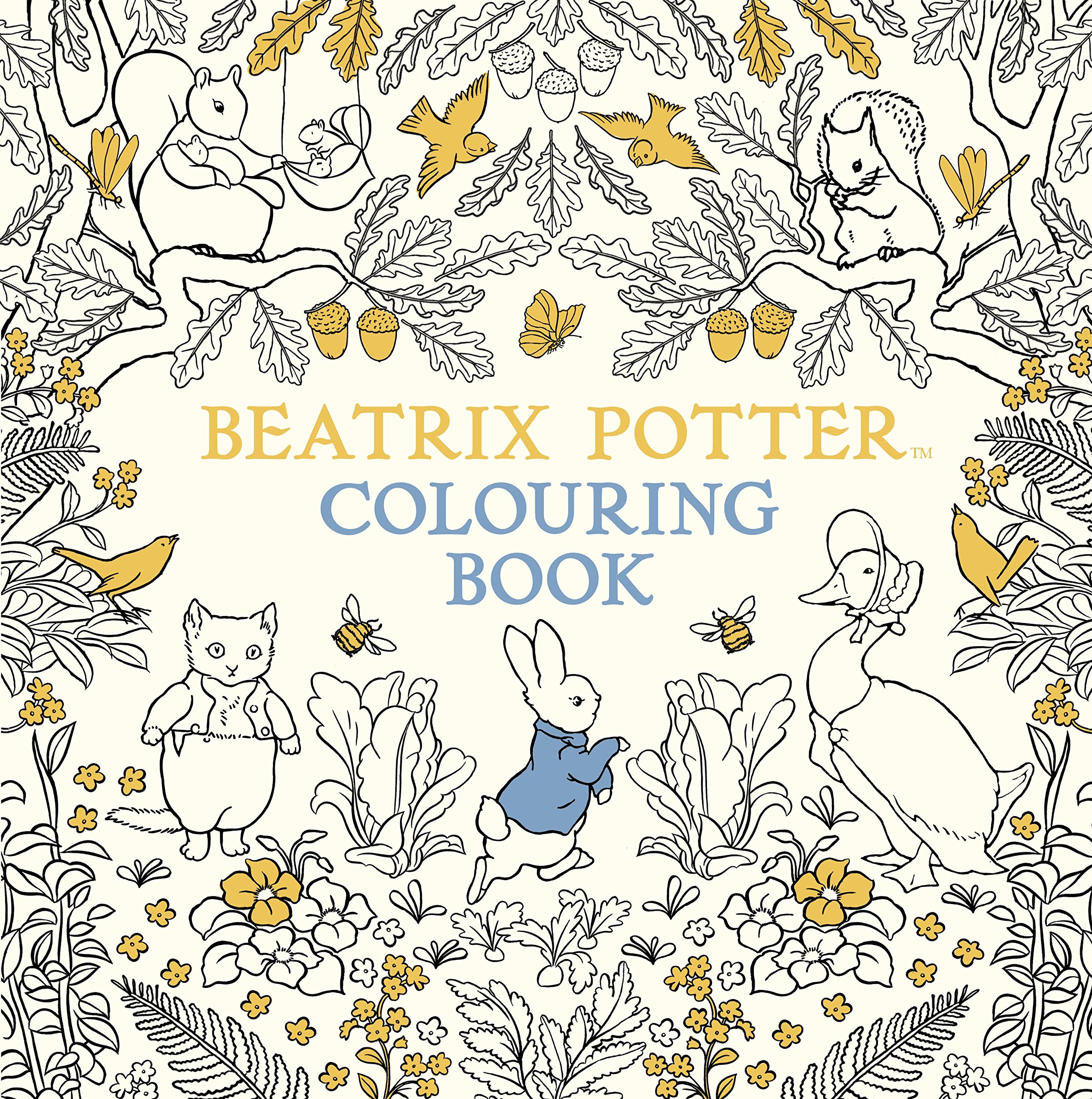 The Beatrix Potter Colouring Book Amazoncouk 9780241287545 Books