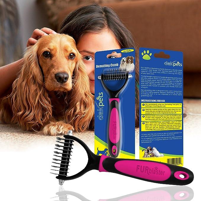 DakPets Cepillo de Aseo para Mascotas. ...: Amazon.es: Productos para mascotas